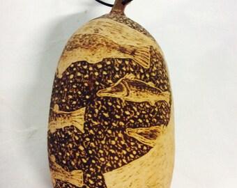 kimberley boab..nut engraved..