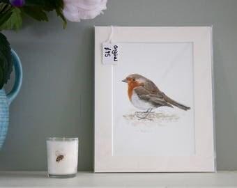 Robin original watercolour painting