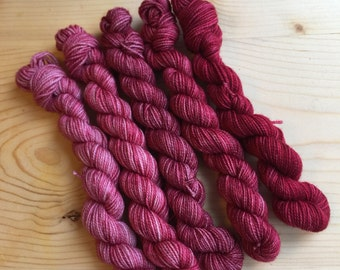 study in red no. 1 - eponymous sock (5, 20g mini skeins)