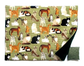 Catnip Mat and Catnip Cats on  Green Refillable Reversible