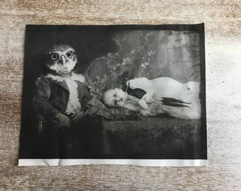 Fabric Panel - Owl Head boy with baby - Children of Edgewood Forest - Gothic Fantasy