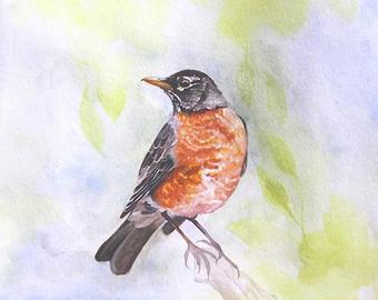 Blue Bird - Fine Art Print - 11x11