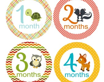 Gender Neutral Baby Month Stickers Woodland Animals Baby Girl Boy Growth Decals Monthly Baby Stickers Baby Shirt Stickers Baby Shower Gift