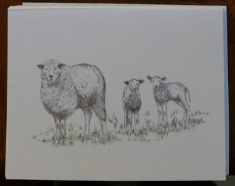 Artist drawn NOTECARDS  digital printed on quality cardstock package of 10 SPRING LAMBS free shipping