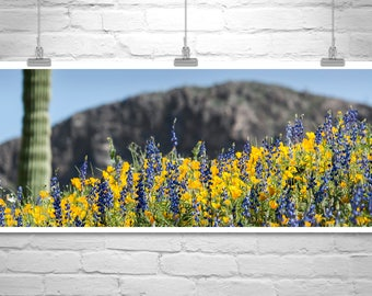 Tucson, Desert Landscape Photography, Desert Art, Wildflower Photo, Cactus Art, Picacho Peak, Landscape Art, Panoramic Art, Poppies, Lupine