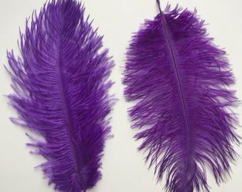 OSTRICH PLUMES , 2 pieces, purple /  501