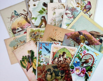 Group of 14 Victorian Trade Cards with Birds