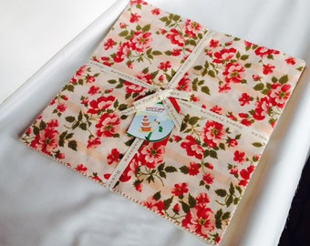 """Layer Cake Avoncliff RARE Out of Print Robyn Pandolph 10"""" Squares Floral Pink Shabby Chic"""
