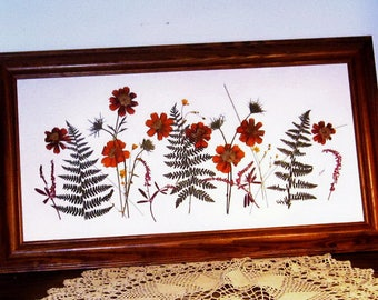 SALE! Meadow of rust and green, pressed flower art, 20x10