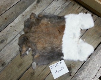 One Dutch Rabbit Hide as Shown. Lot No. 161202-O