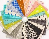Black Friday SALE Print Shop Fat Quarter Bundle by Alexia Marcelle Abegg for Cotton + Steel - 22 prints