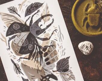 beetle - archival art print