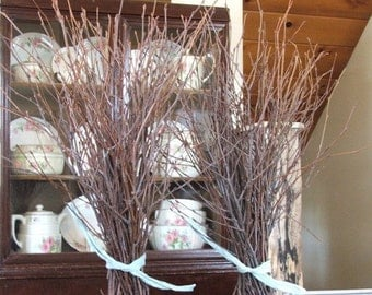 On Sale Natural BIRCH Branches, rustic decor,  Event Centerpieces.  Crafting