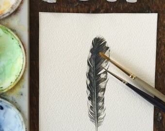 Woodpecker feather study - original watercolour feather
