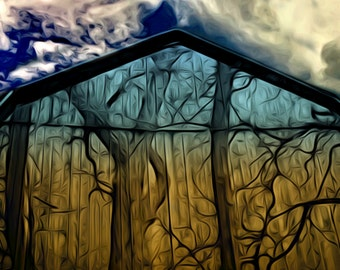 Barn Wood 8x10 photo