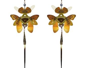 Sobek / Shoulder Duster Earrings / Real Butterfly with Pearl / Gold Kanzashi Long Dangle Earrings