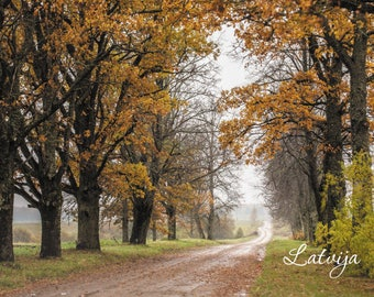 Country Roads in Autumn Postcards - Fine Art Photograph