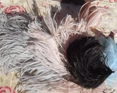 Lot of Vintage French Milliners Hat Feathers Ostrich Plume decoration