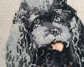 Vintage Needlepoint of Cocker Spaniel Grey and Black on Beige Ground , French Canvas by G. Grenet and Cie - Pillow Needlepoint