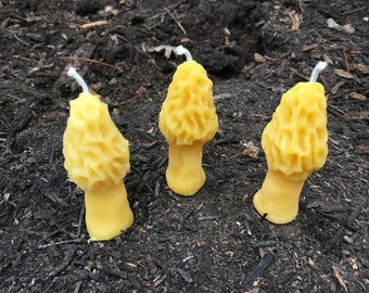 Beeswax Candles -Set of 3 Morel Mushroom Candles