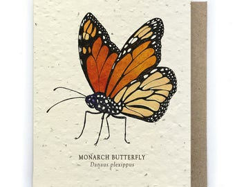 Monarch Butterfly Greeting Card - Plantable Seed Paper - Blank Inside