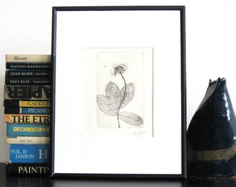 Original Etching Print FLY & FLOWER Lovely Bug Floral Etching Printmaking Branch Botanical Cottage Wall Decor Hand Pulled Print 8x5