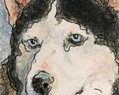 Siberian Husky - ACEO Siberian Husky - Original Dog Art - Dog Drawing 2.5x3.5 inches