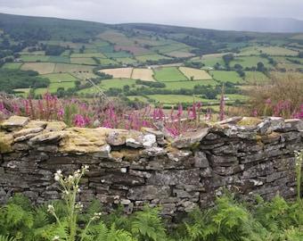 Wales Photo, Wales Print, Wales Canvas, Wales Rock Wall Photo, Wales Field Photo, England Art, UK Canvas, UK Art, UK Canvas, uk print