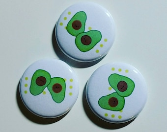 Avacado 1 inch pinback button set of 3