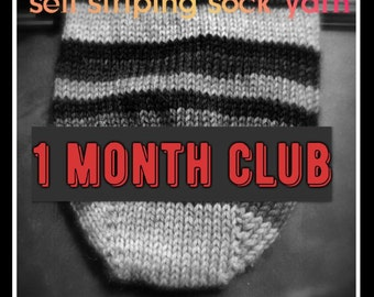 Self Striping Sock Yarn Club, 1 Month, January 2017
