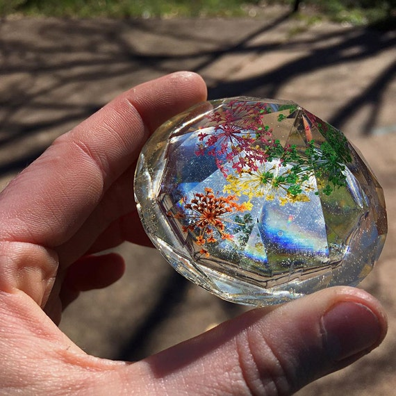 Rainbow Queen Anne's Lace Preserved in Clear Casting Resin, enclosed within Crystal Structure.
