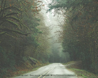 Travel Photograph | Forest Road | Green Photo | Forest Photo | Foggy Image | Nature Photo | Tree Photograph | Oregon Forest Photography