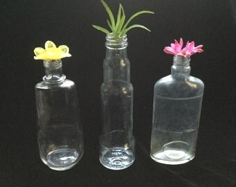 Kitchen Sauce Bottles - Clear Glass Bottle Trio - Instant Collection