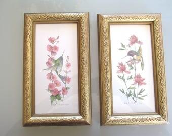 Vintage Hummingbird prints by Carolyn Shores Wright, 1995 hummingbird prints