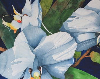 NEW! Art Original Watercolor Painting of WHITE ORCHID