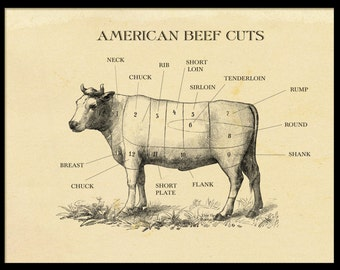 American Beef Cuts Etching Print Vintage Style Cow Print ideal for home kitchen restaurant perfect gift for a foodie food lover art wall art