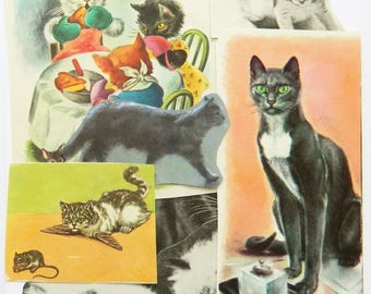Cat Ephemera Pack - A 40-Piece Paper Pack of Cutouts for Crafts
