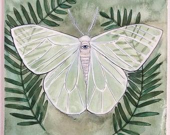 Original - Lymantriid Moth