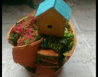 Mini giardino nel vaso