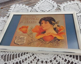 F H Speich Co. vintage 4x6 popular brand orange poppy floral postcard metal white framed print flowers picture frame victorian photo shabby