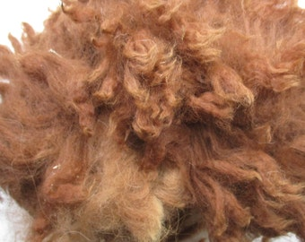 Raw Unwashed Alpaca Brown Fleece for Craft, Spinning and Stuffing
