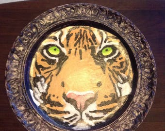 Green Eyed Tiger on a plate
