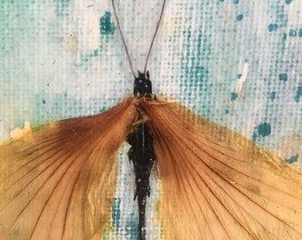 Dragonfly, original floral artwork