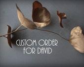Custom listing for David