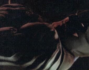Batman Bookmark - Christmas Gift - Dark Knight - Bookmark - Black - Bruce Wayne - Gotham - Robin - Cat Woman -Laminated - Card Stock Backed