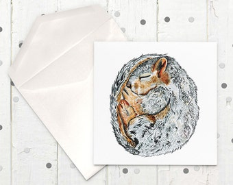 Curled Squirrel Square Greeting Card