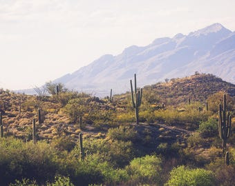 Arizona photograph, landscape photography, saguaro cactus, southwestern decor, southwest landscape, large wall art, desert decor, old west