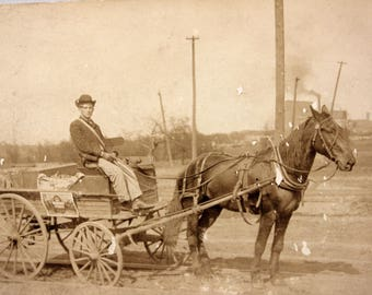 Man Pulling Wagon w Horse Photograph Post Card RPPC 1910s South Chicago