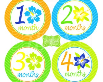 Tropical Baby Monthly Stickers - Baby Bodysuit Stickers - Tropical Flower Monthly Baby Stickers - Baby Boy Monthly Stickers - Unisex - 050