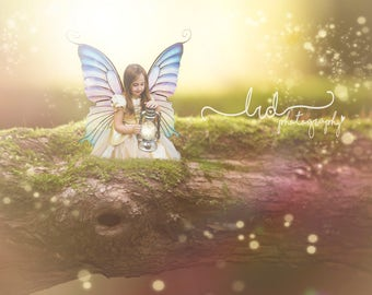 Digital Backdrop Mossy Fairy/Fantasy Log/Prop